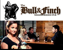 featured bull and finch 2015